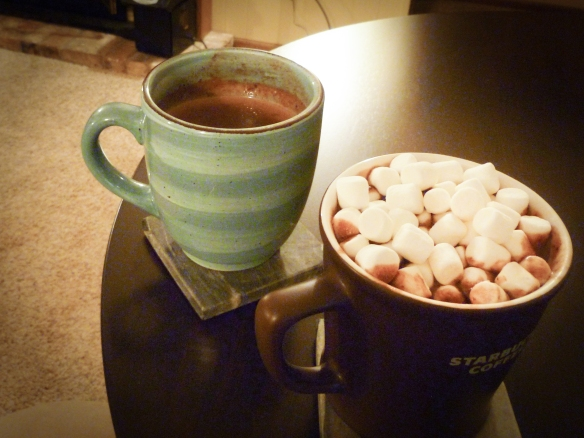 Homemade Italian Hot Chocolate - YUM!